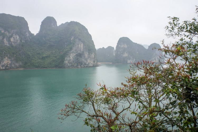 Cruise off beaten tracks on a day trip aboard Indochine sailing Junk in Lan Ha & Halong Bay 3