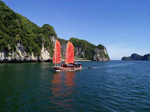 Discover Lan Ha Bay, Viet Hai Village and Cat Ba Island with overnight at local homestay in National Park 3